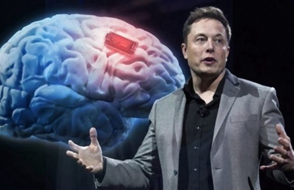Elon Musk's: Neuralink- What's science and what's not
