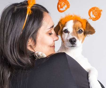 """4 tips to celebrate """"Halloween"""" with your pet"""